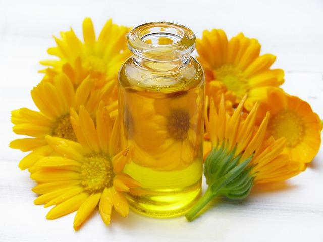 olej z wiesiołka właściwości