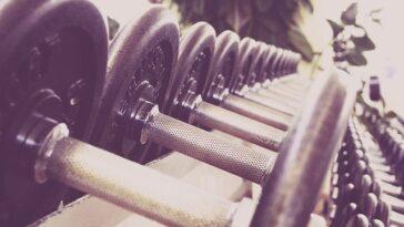 sprzęt na siłownie